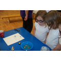 Science Afternoon - 10th August
