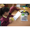 Following compass directions with a Beebot