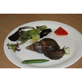 The fully grown snail REALLY liked cucumber!