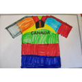 Design a Rugby Shirt - Hall Activity