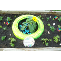 Gardening - 1st Week