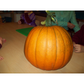 Mr Woodhall gave us a pumpkin