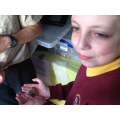some children held Charlotte the SPIDER!!!