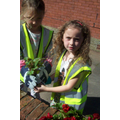 Planting Plants with Tameside Council - 7th August