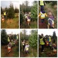 Tea Club Collecting the Christmas Tree