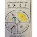 Seasons of the year work.