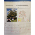 Yet more ideas about autumn in our topic work.
