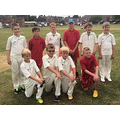 Our cricketers