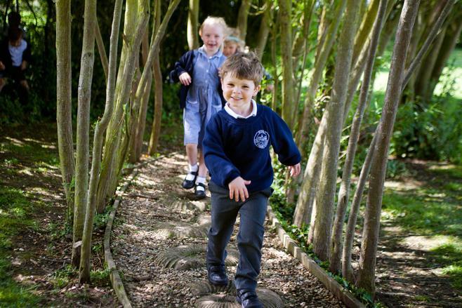 Willow maze