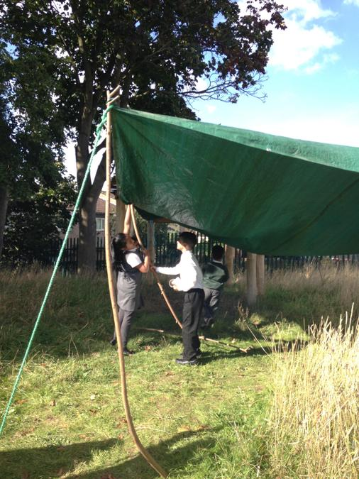 Den building and team work