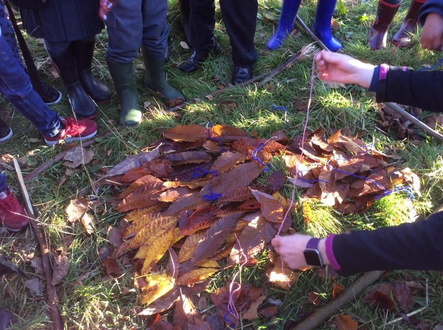 Creating pictures with leaves