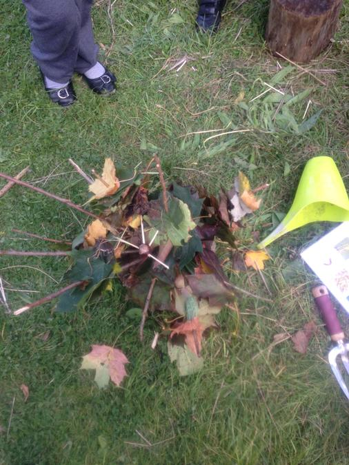 Collecting autumn leaves - I know what a conker is