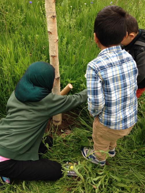 Year 5 teaching Nursery about habitats