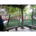 South Pudong Elementary School garden