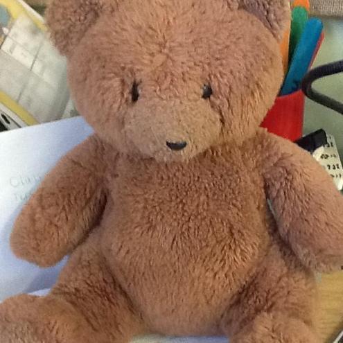 Poppy the Bear