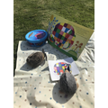 Hedge and friends had fun outside reading Elmer.