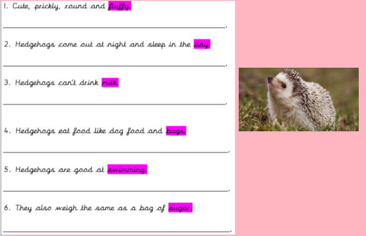 Our First Lines of our Hedgehog Poem