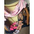 Francesca used two dens to build her den!