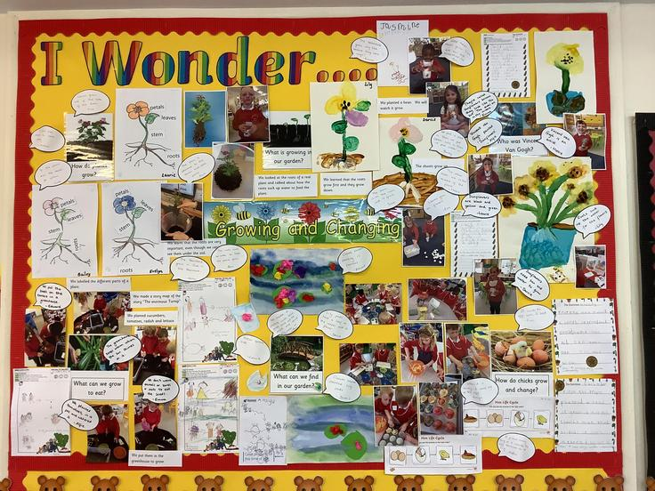 Our learning wall from last term