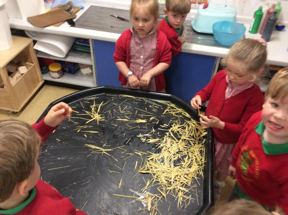 Science investigation with Lions hair...how can me make it soft? What happens?
