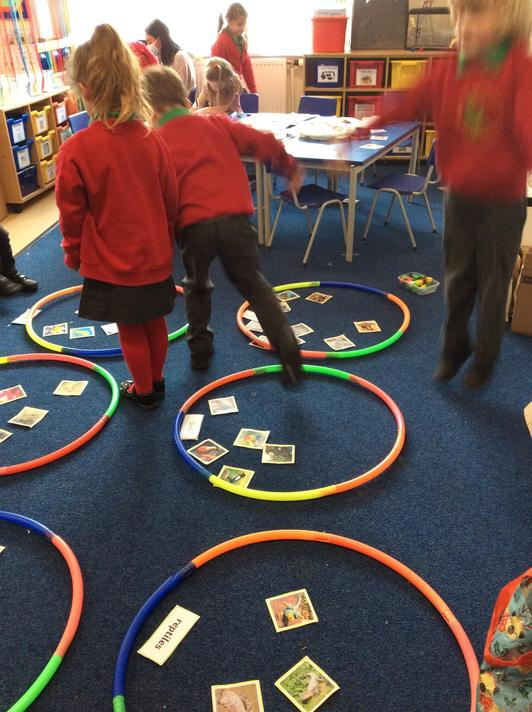 We loved sorting the animals into different classification groups. We learnt lots of facts