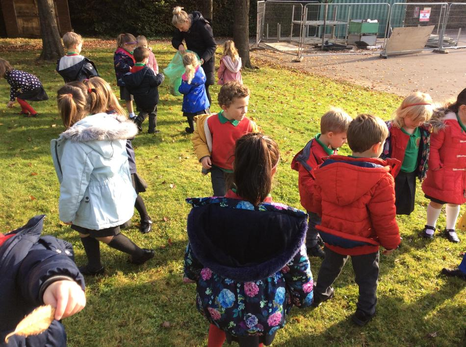 R3 went on a leaf hunt to use for our creative activities