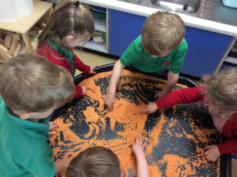 Creating stripes with red lentils in our tuff tray.