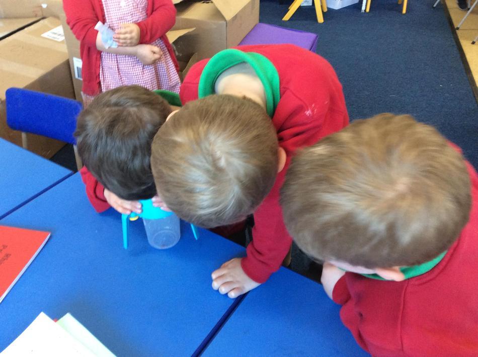 We found a spider so we got investigating!