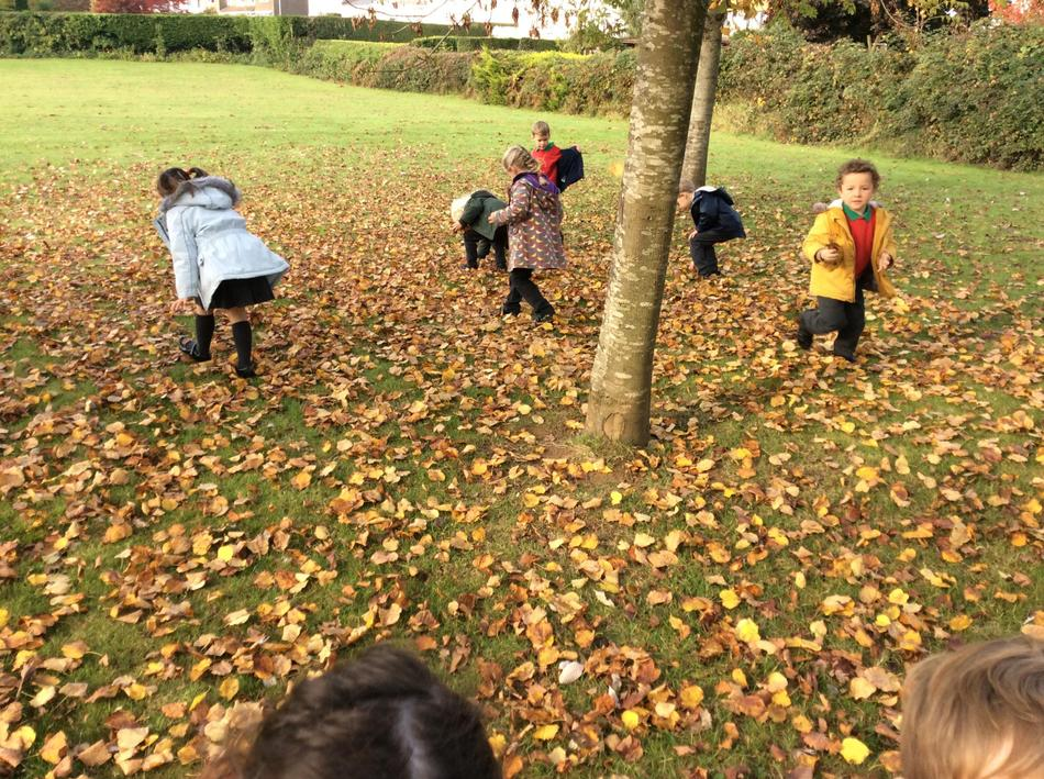 We found lots of different shapes and colours!