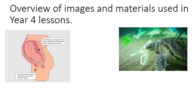 Examples of images for Year 4