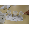 We waited for a week to compare our 3 glues