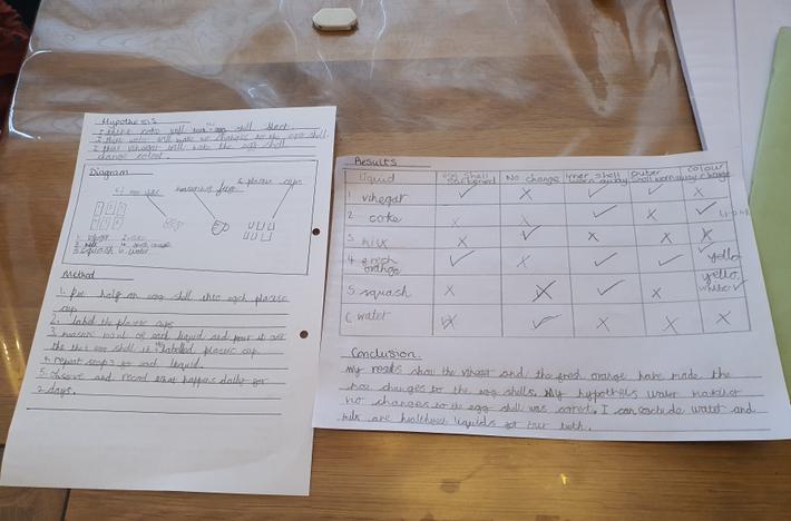 Owyn's results