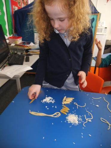 Exploring cooked and uncooked pasta
