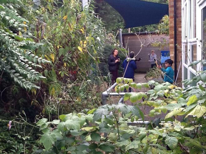 Year 4's gardening project- Week 1