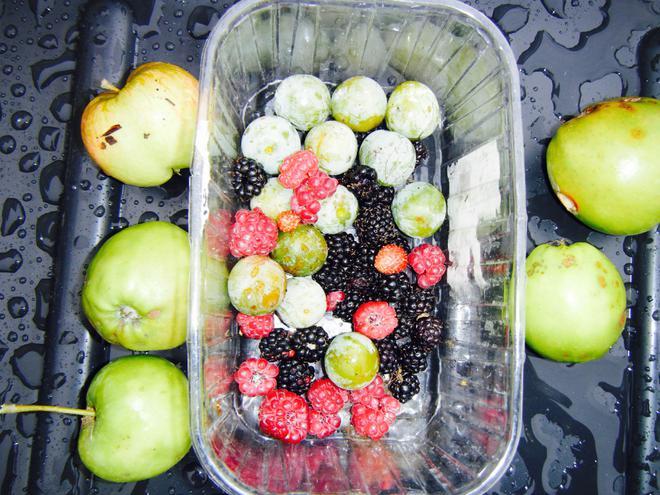 Ready to make fresh fruit cordial!