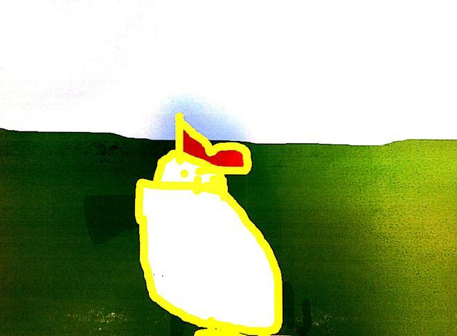 Rosie's Hen