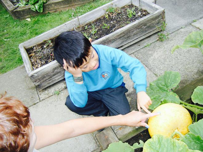 Exploring different Fruit and Vegetables