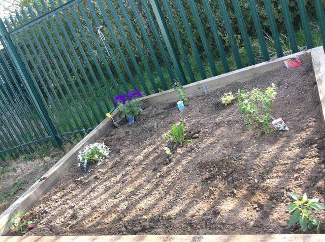 Sensory raised bed: bright and colourful