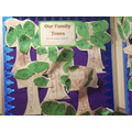 Reception Family Tree Collages