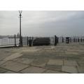 River Mersey Trip