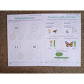 Spring booklet Maths examples