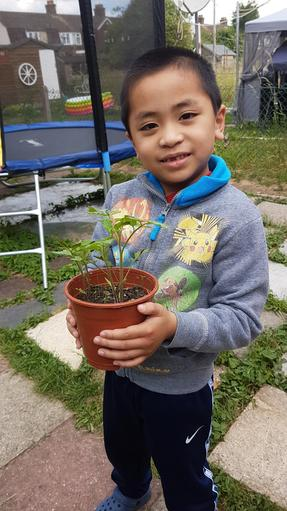 Growing his own plant.