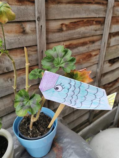 Hristo's Origami fish.