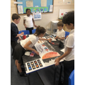 Linking our Science learning in Art