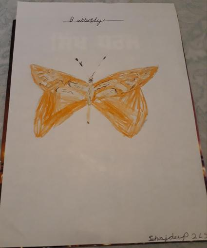 Sehajdeep has been practicing drawing a butterfly.