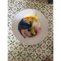 Enes's food dye experiment