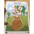 Ruby's rabbit