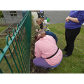 Planting plants and flowers around Mrs Taylors memorial bench.
