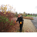 One of our students tidying up the bushes.