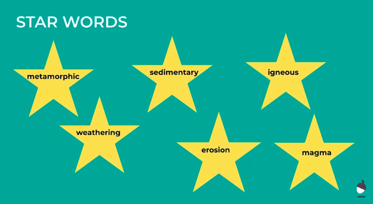 Science Star Words